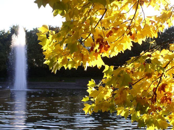 Herbstlaune im Willicher Freizeitzentrum
