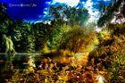 Herbstleidenschaft - autumn passion