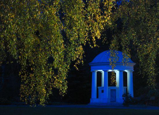 Herbstleuchten bei Nacht