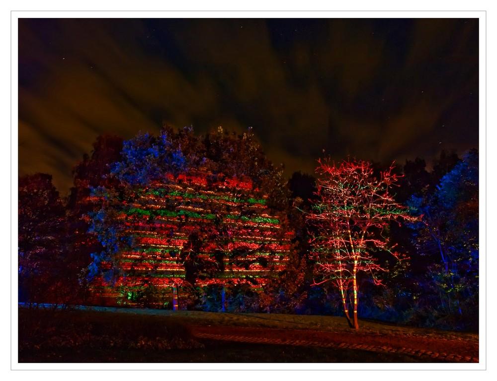 Herbstleuchten im Maxipark 6