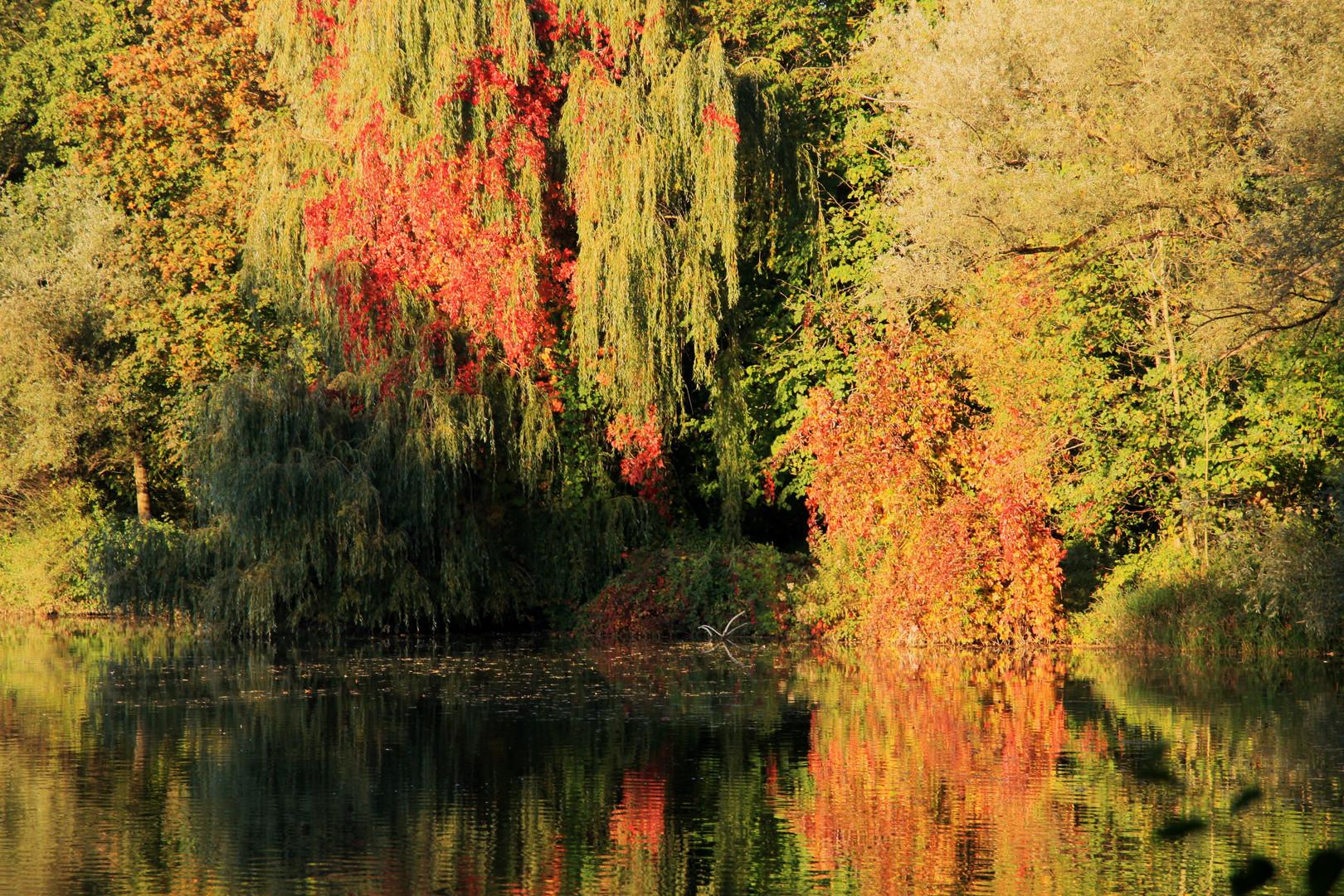 Herbstlich 1