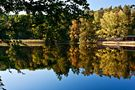 Herbstlich von Addi Beck