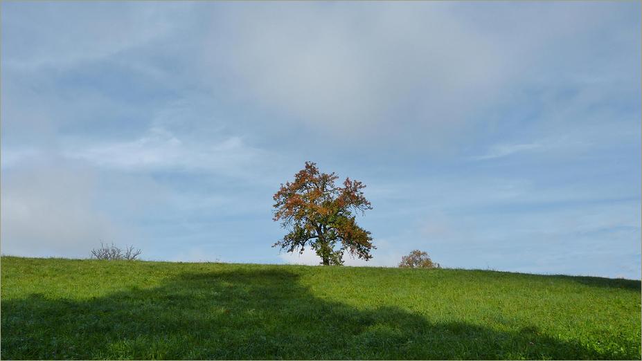 Herbstlich*