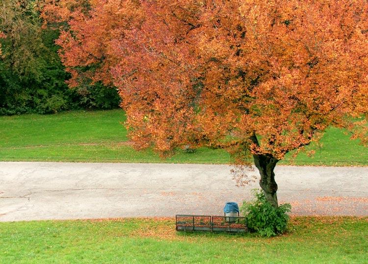 Herbstlich blau .....