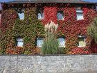 Herbstlich Bunt in Bergneustadt