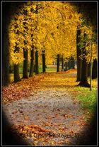 Herbstlich schön