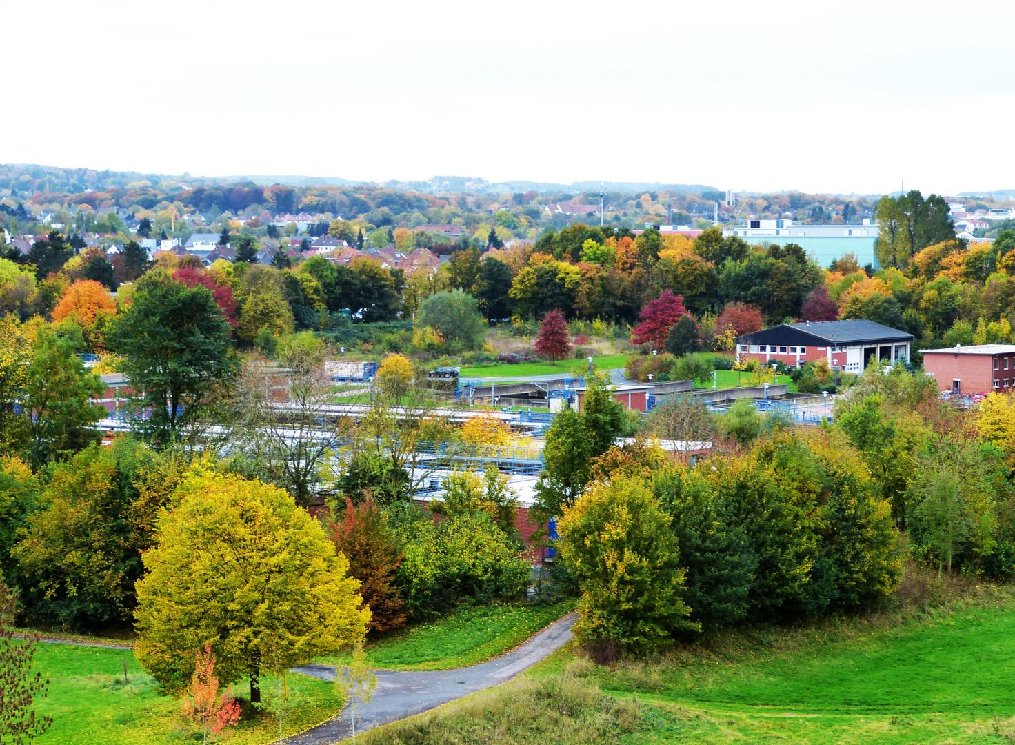 Herbstlich schön aber anrüchig