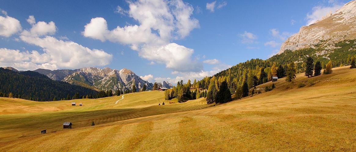 Herbstlich zeigen sich die Wiesen auf der Plätzwiese, die Plätzwiese (ital. Prato Piazza) ist..