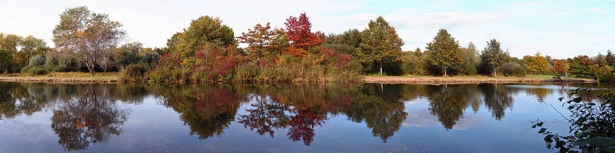 Herbstlich2