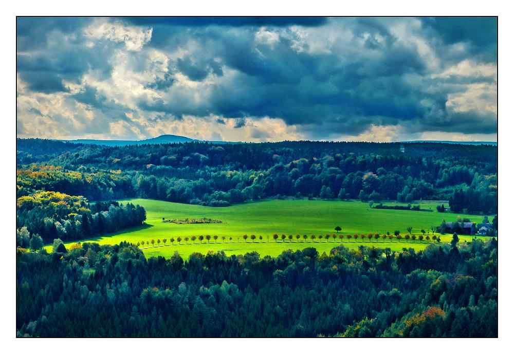 Herbstliche Allee bei Königstein