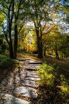 Herbstliche Aussichten