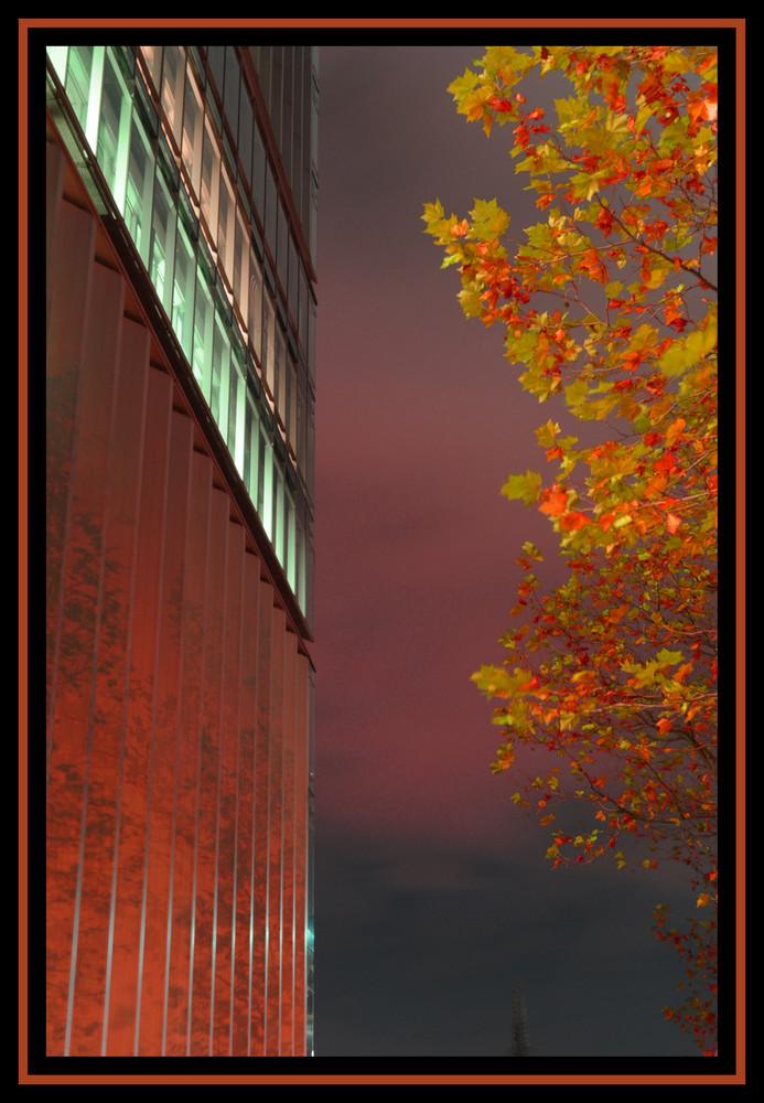 Herbstliche Baumspiegelung
