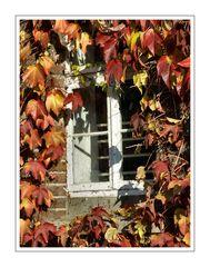 Herbstliche Impression 02