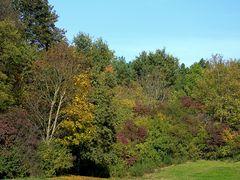 Herbstliche Impressionen im Ostpark München