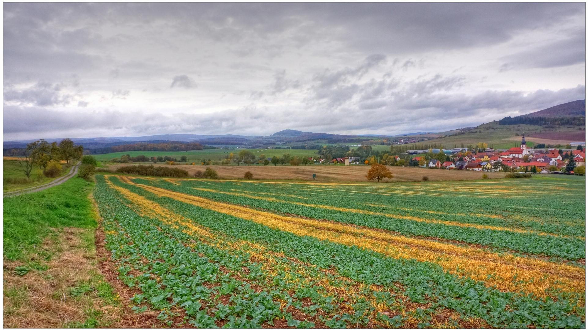 Herbstliche Landschaft III (paisaje otoñal IIl)