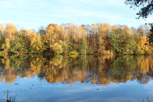 Herbstliche Landschaft im Wasserspiegel