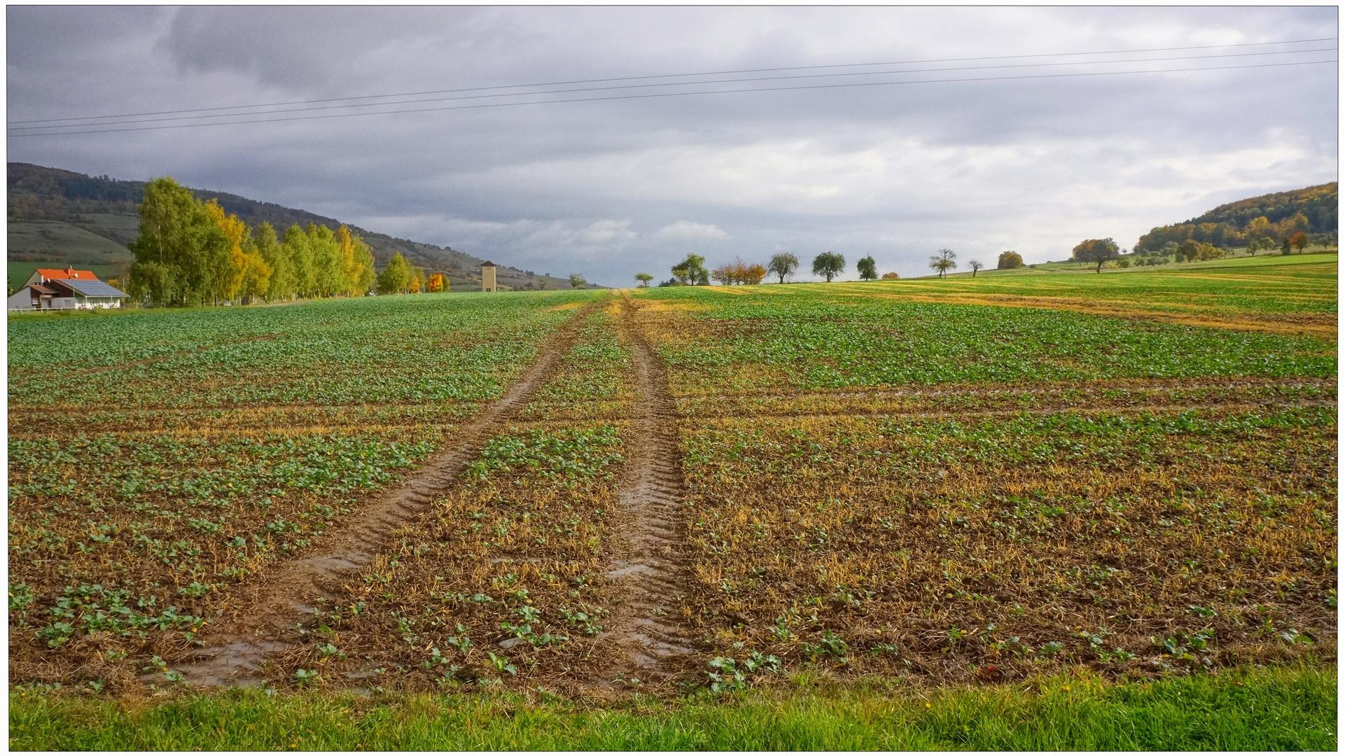 Herbstliche Landschaft (paisaje otoñal)
