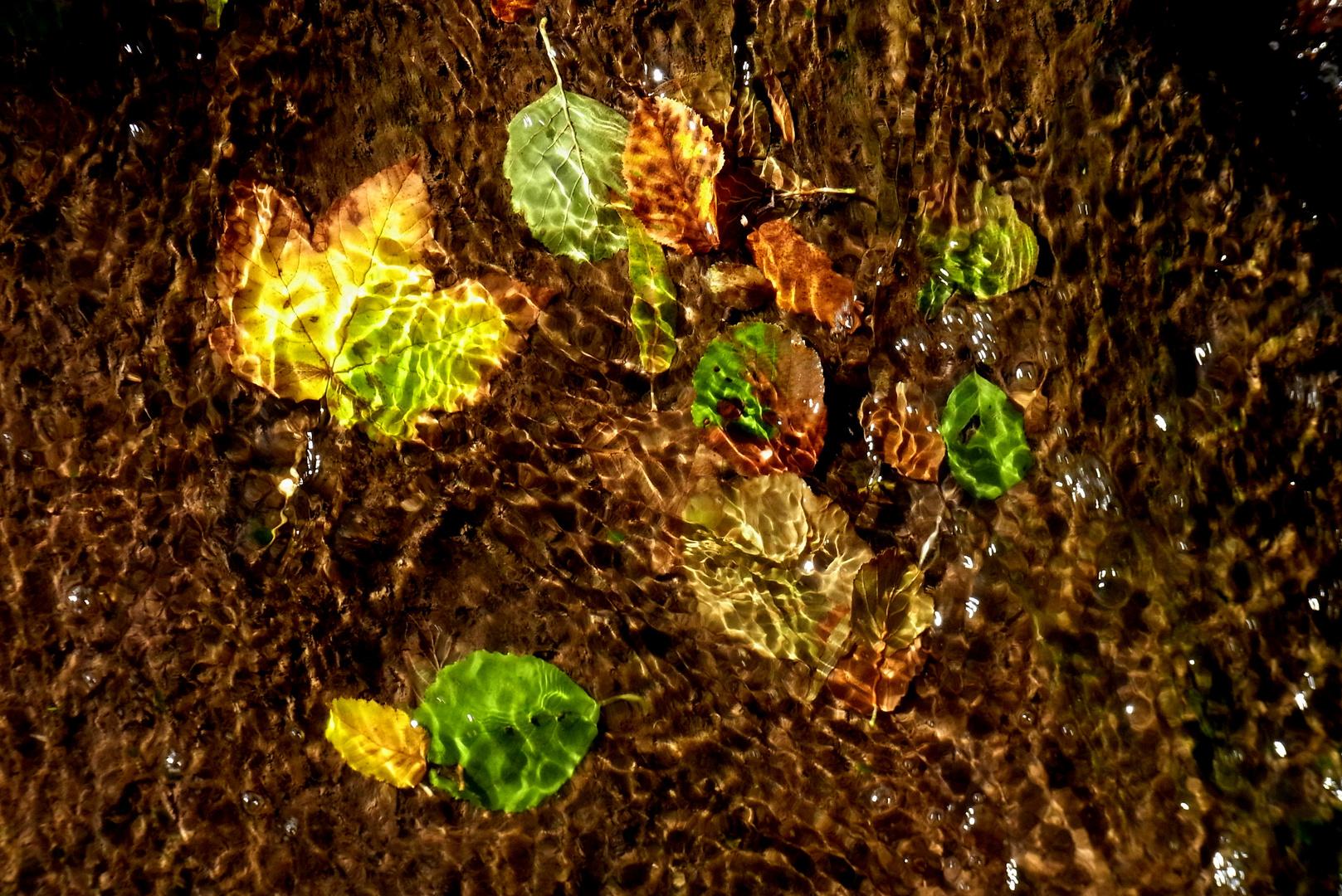 Herbstliche Licht-Wasser-Spiele