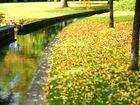 Herbstliche Paderquellen
