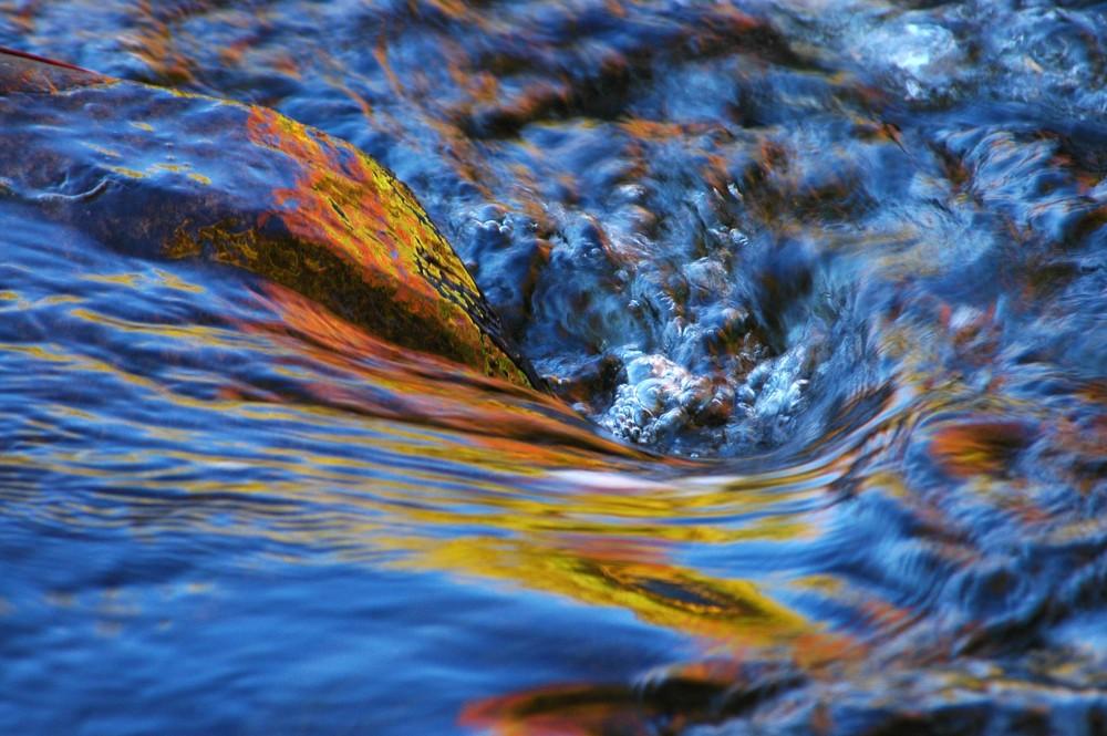 Herbstliche Reflextionen I