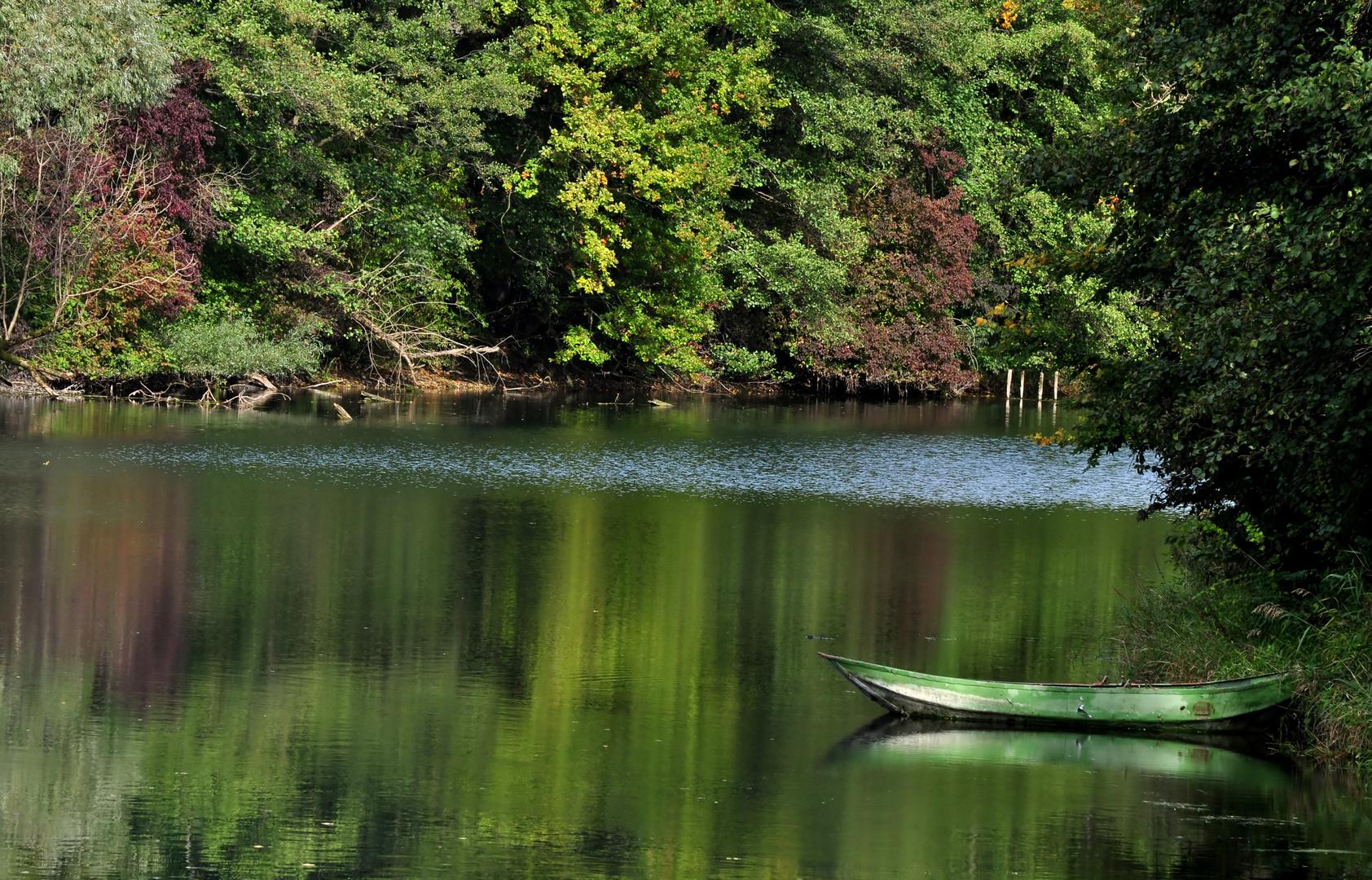 Herbstliche Rheinauen
