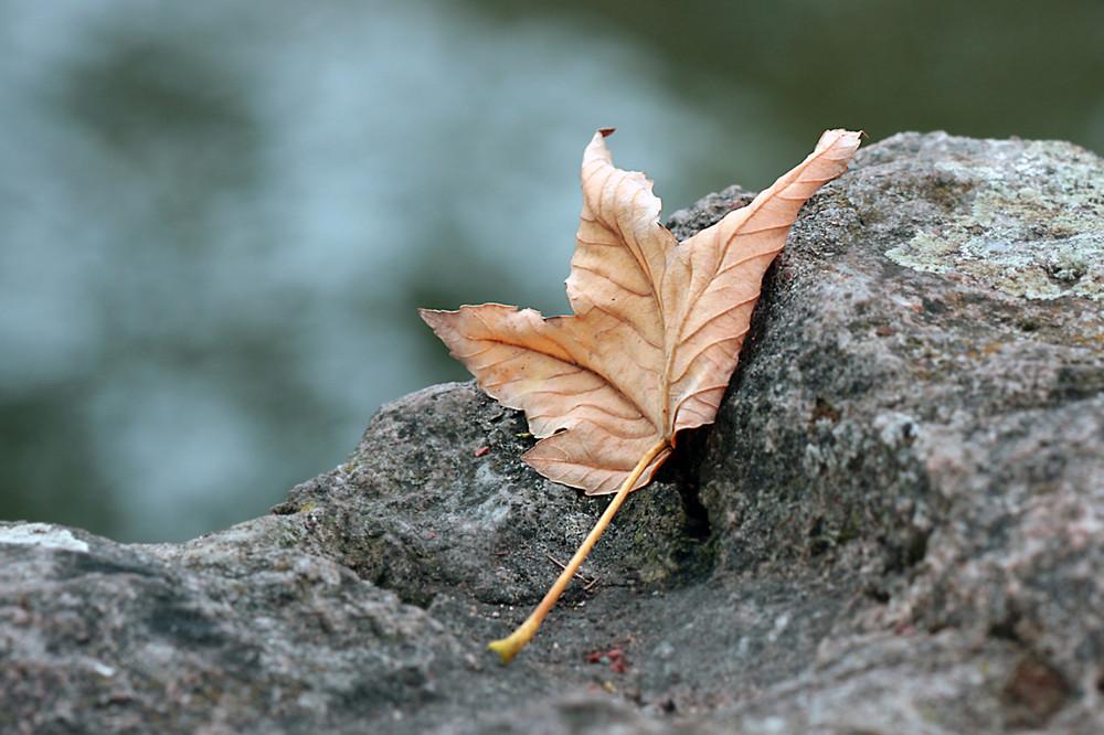 Herbstliche Ruhe