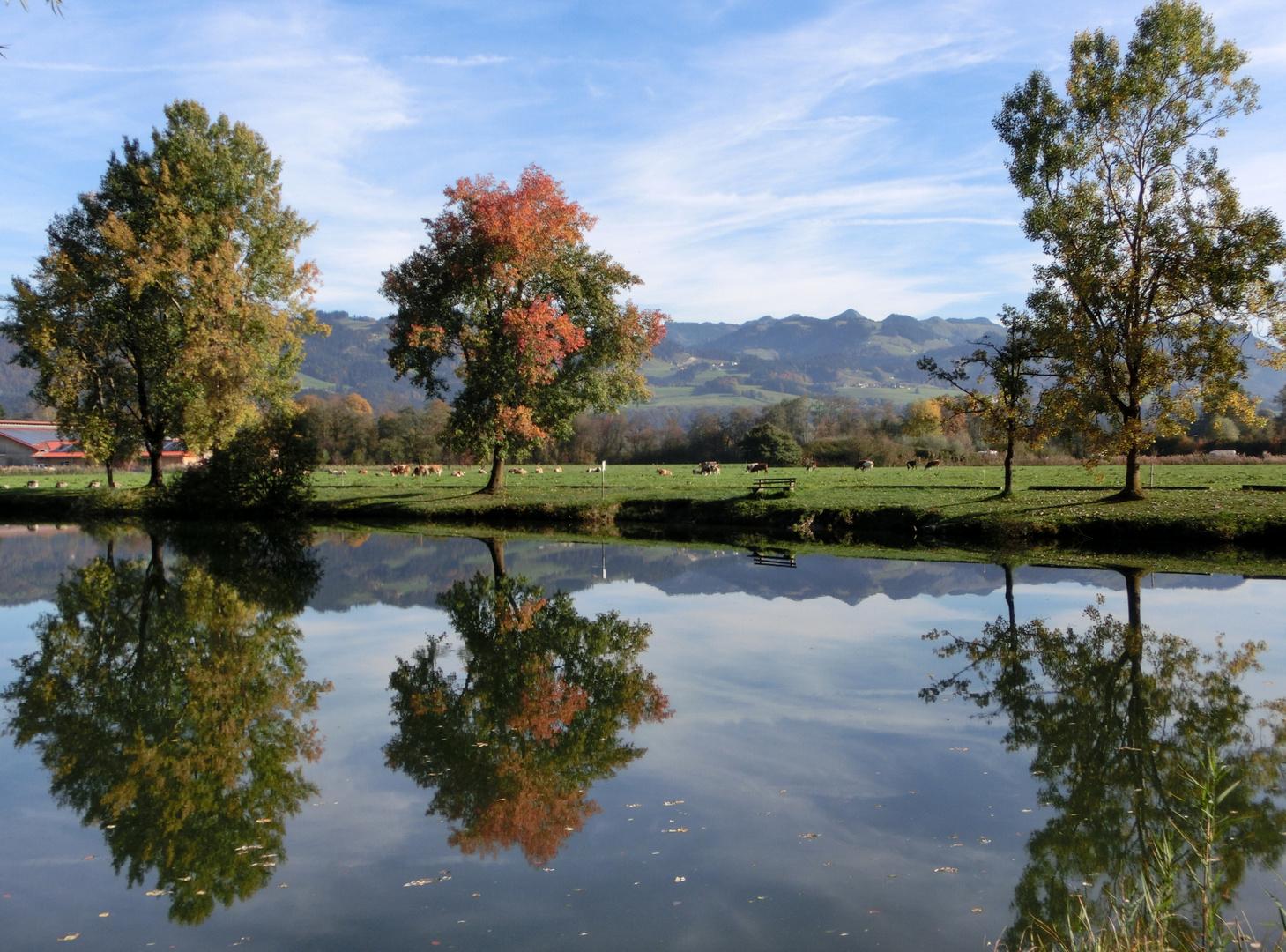 Herbstliche-Spiegelung.....