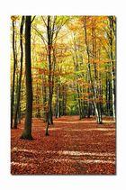 Herbstliche Stille