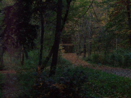 Herbstliche Stimmung auf dem Weinberg ( Rathenow)