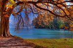 Herbstlicher...