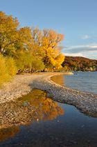 Herbstlicher Ammersee