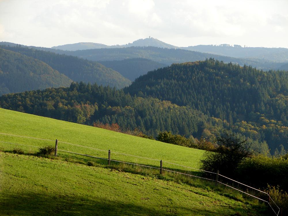 Herbstlicher Blick über das Ahrtal zur Nürburg