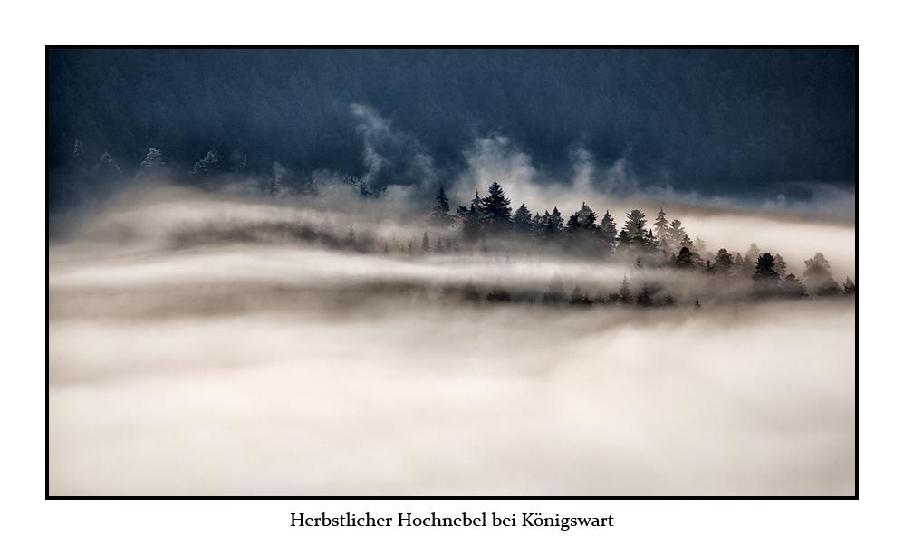 Herbstlicher Hochnebel bei Königswart