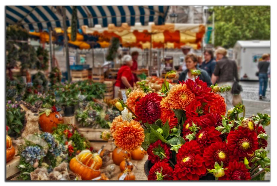 Herbstlicher Markt