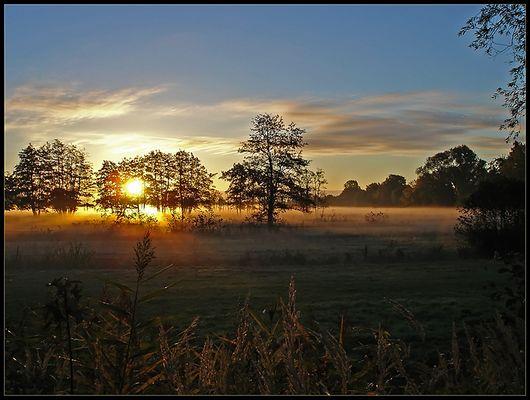 Herbstlicher Morgen in Kirchwerder