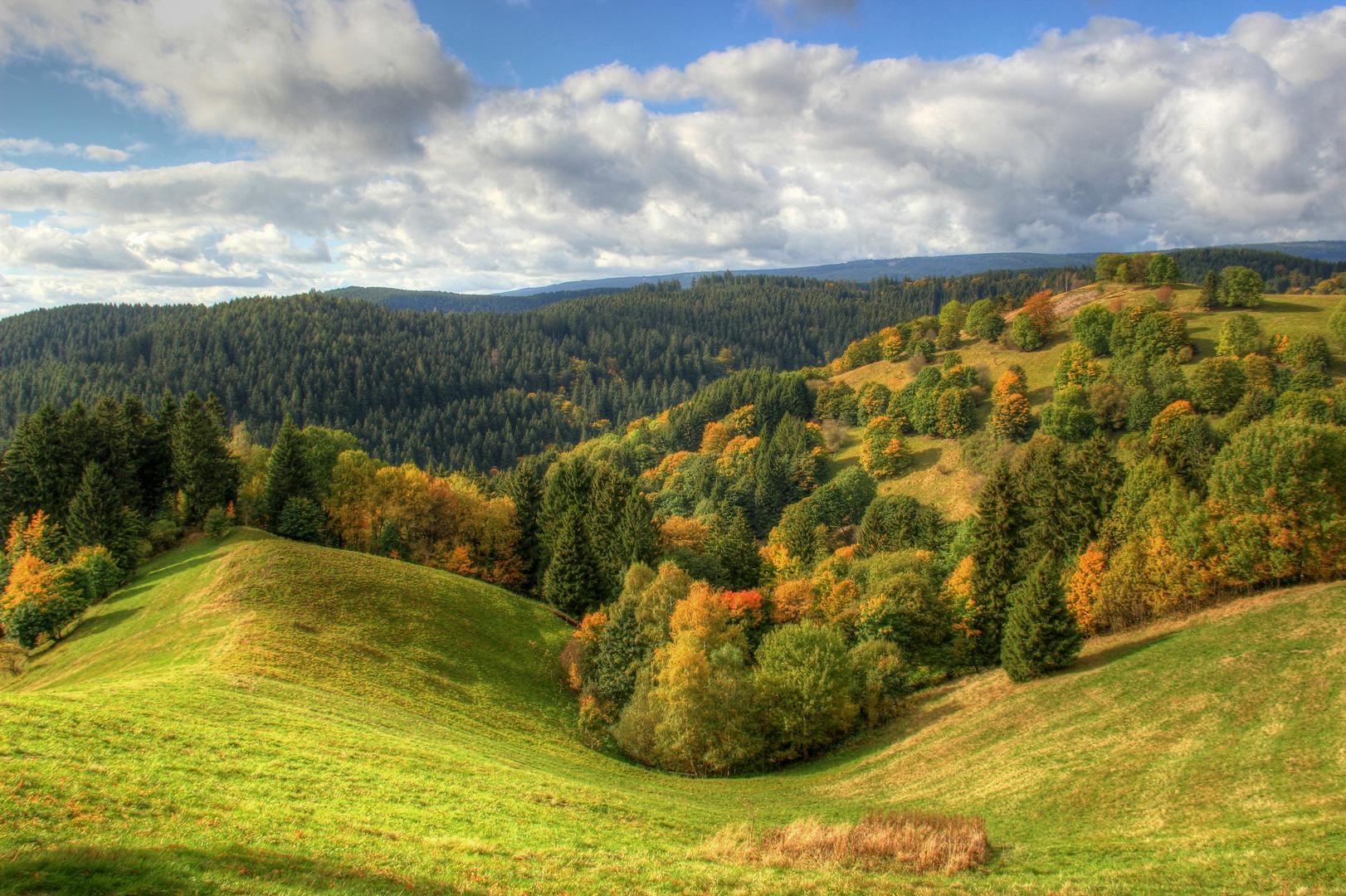 Herbstlicher Oberharz