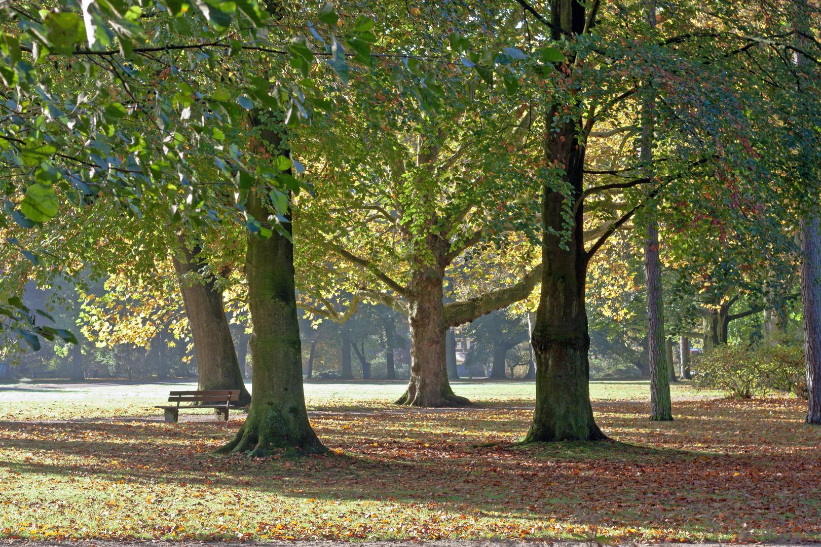 Herbstlicher Park in Moers