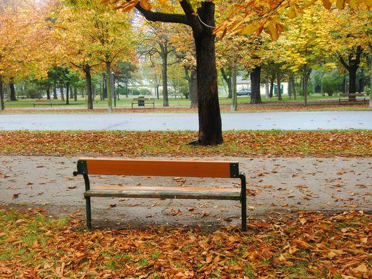 Herbstlicher Park Nähe Prater...