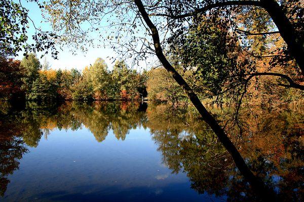 Herbstlicher See