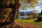 ~ Herbstlicher Seeblick II ~