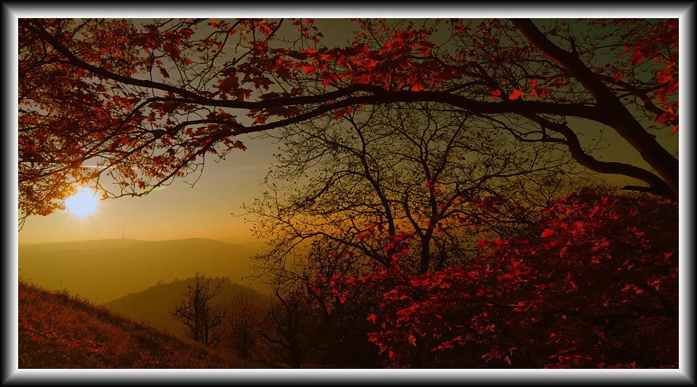 Herbstlicher Sonnenuntergang II