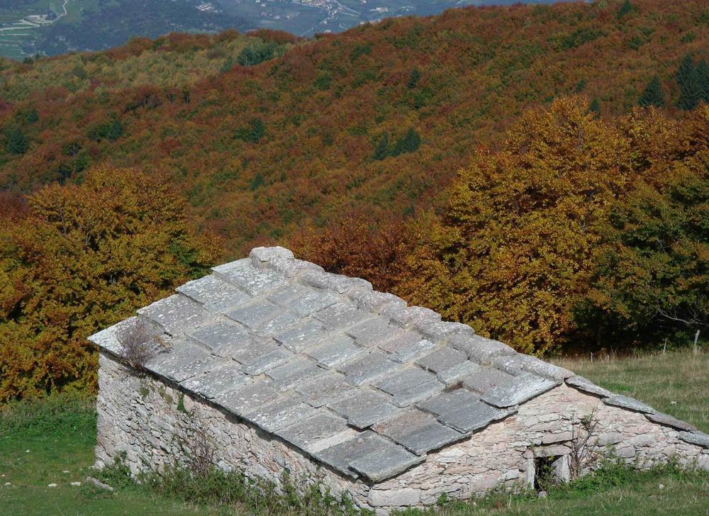 Herbstlicher Wald mit Steinhütte