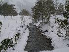 Herbstlicher Winter in Lenggries am 15.10.09