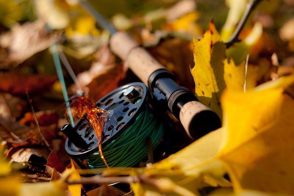 Herbstliches Fliegenfischen auf Hecht