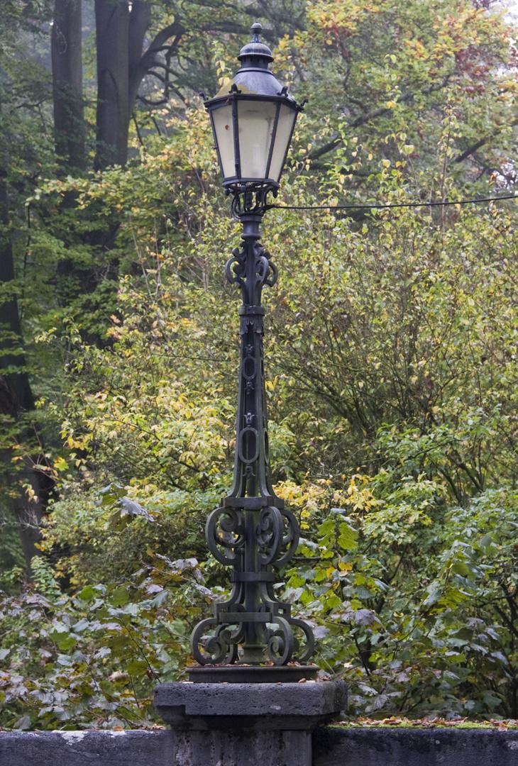 Herbstliches im Park