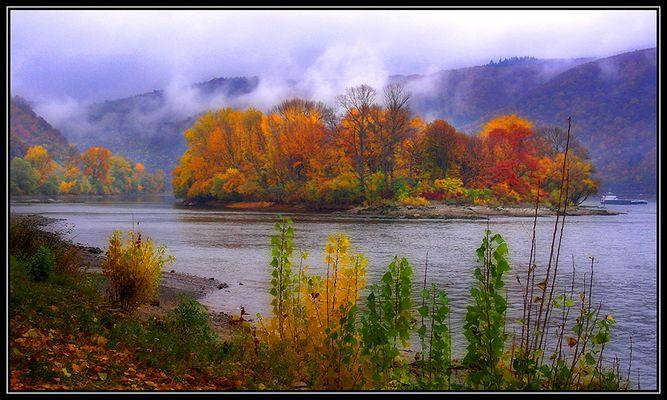 Herbstliches Mittelrheintal
