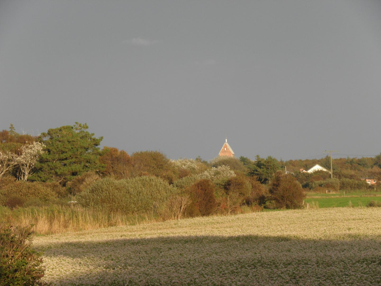 Herbstliches Süderende (Föhr)