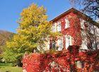 Herbstliches Wien