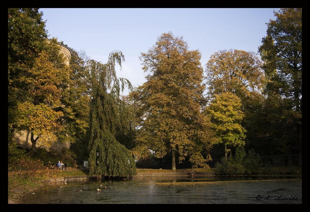 Herbstlich(t) 3