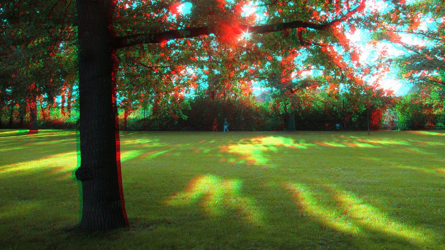 Herbstlicht (3D-Foto)